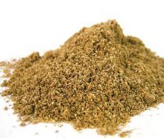 Coriander ground to buy Poltava wholesale. Spices