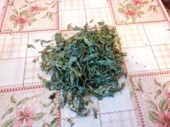 Tea mint.