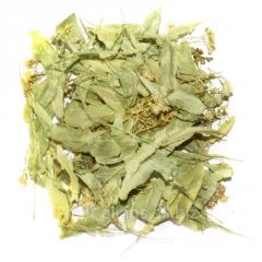 Color of a linden (Tilia Cordata)