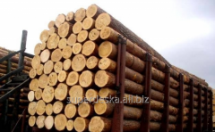 Bar round timber, purchase of tree