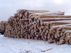 Coniferous bar on purchase, we buy forest products