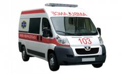 Emergency medical service on the basis of the