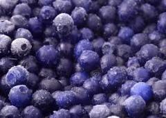 The frozen bilberry