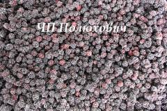Blackberry fresh