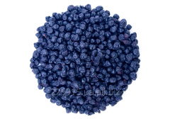 Dried bilberry