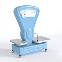 Rn-10ts13u's scales