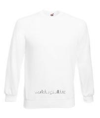 Men's sweatshirt raglan 216-30