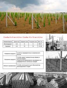 Опоры для винограда ЖБИ, оптовая продажа, Крым, в