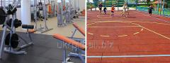 Резиновые спортивные покрытия для спортзала