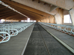 Rubber rugs, mats for cowsheds, stalls, pigsties