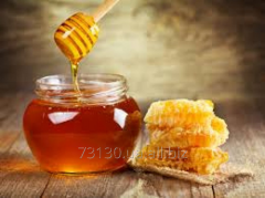 Natural honey from the forest apiary