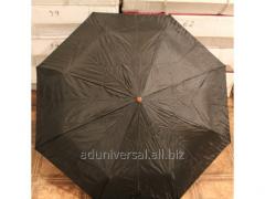 Umbrella of kladny