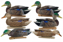 Effigies of ducks of Avian-X Early Season...