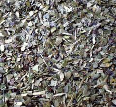 Tea in LESS SPOON stacks