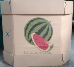 Water-melon box, oktabin
