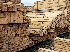 Bar wooden conifer