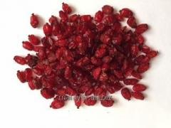 Barberry (Iran) packaging sack of 1-5 kg
