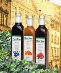 Syrups organic, TM syrups Sir Eko, environmentally