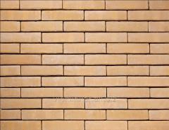 Tile of manual molding of 585 Pescara VB