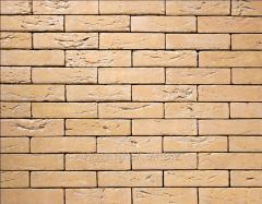 Tile of manual molding of 585 Pescara