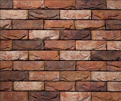 Tile of manual molding of 587 Alexia
