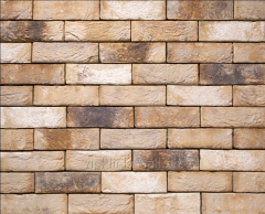 Tile of manual molding of 81 Ligure