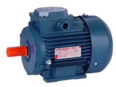 Electric motor asynchronous common industrial