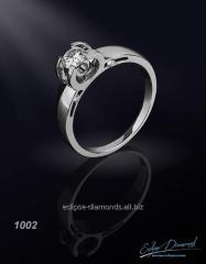 Ring 1002/1