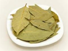 Bay leaf (Georgia)