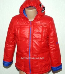 Beautiful jacket of CD park 1604 for the boy