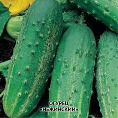 """Семена огурцов """"Нежинский"""""""