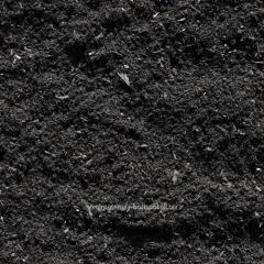 Construction soil, soil export Kiev, Borispol
