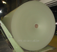 Cardboard basis, for gypsum cardboard