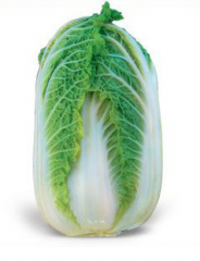 Seeds of cabbage Beijing Zena F1