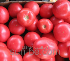 Seeds of tomato indeterminantny Pink Butler F1