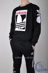 Толстовка мужская трикотажная Adidas Originals
