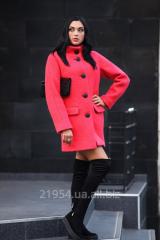 The coat is female