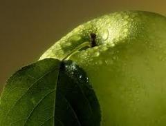 Ароматизаторы натуральные, Арома яблочная,