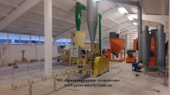 Briquette press shock-mechanical. Equipment: press