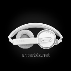 RAPOO H6080 bluetooth 4.0 stereo headset, gray