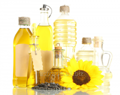 Sunflower oil not refined, fried, filling