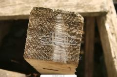 Bar standard chistoobrezny, pine or fir-tree,