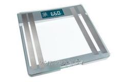 Весы бытовые PSМ