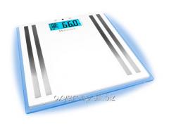 Весы с подсветкой ISA