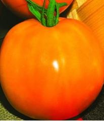 Семена томата высокорослого Ананасный (20 штук)