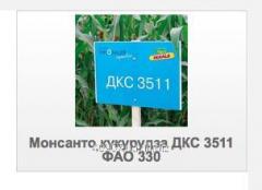 Семена Монсанто кукурузы ДКС 3511 ФАО 330