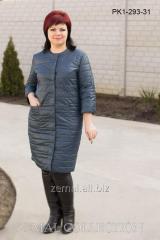 Coat spring PK1-293