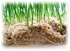 Vermiculite fraction 8 of mm for agromixes