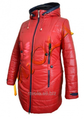 Solo jacket, fall