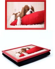 Tray with lap-tray pillow